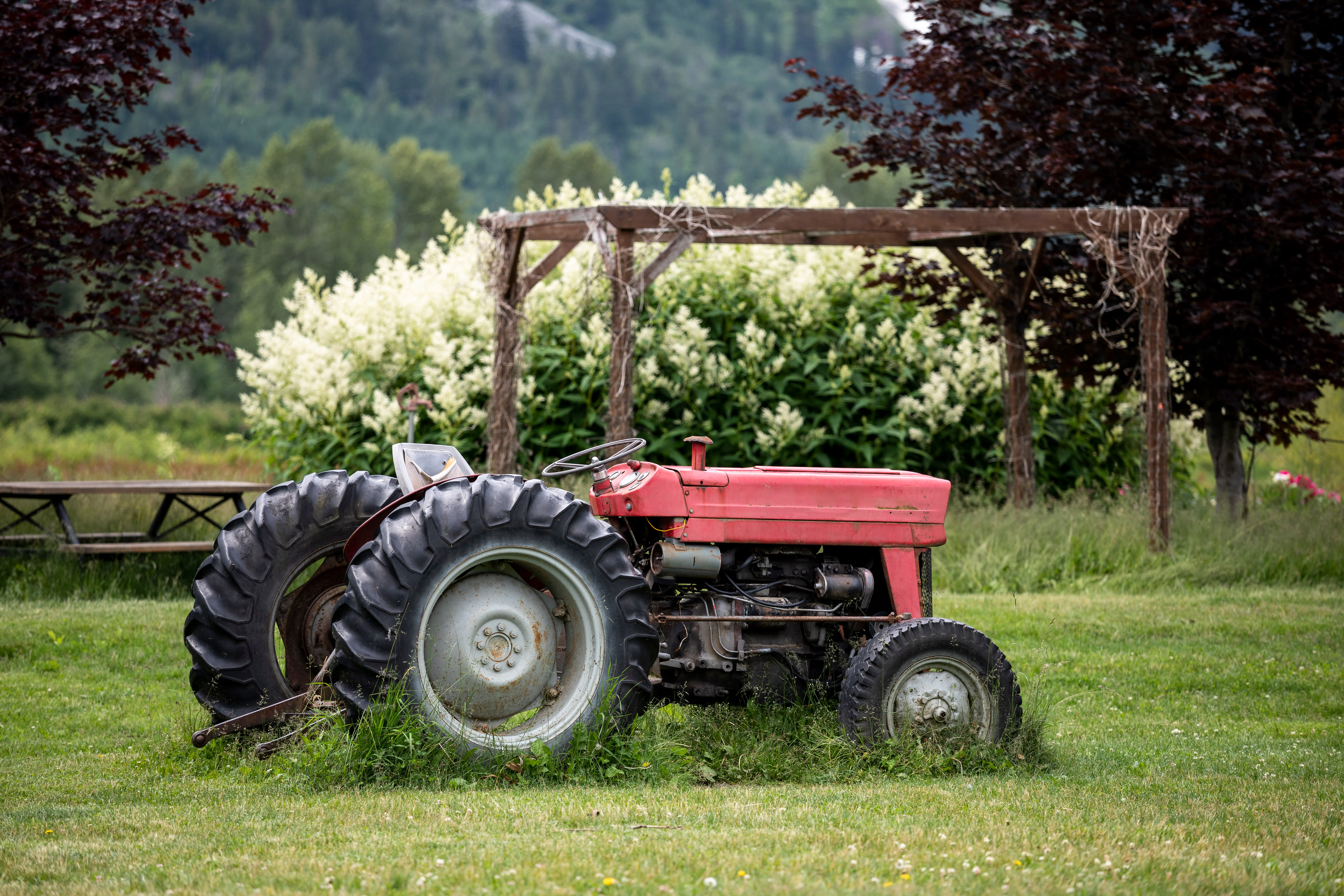 Red Tractor Parked on Grassy Lawn with Semi Pneumatic Tires